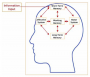 study:novak_j._d._1982_._the_theory_underlying_concept_maps_and_how_to_construct_them._fig_.4.png